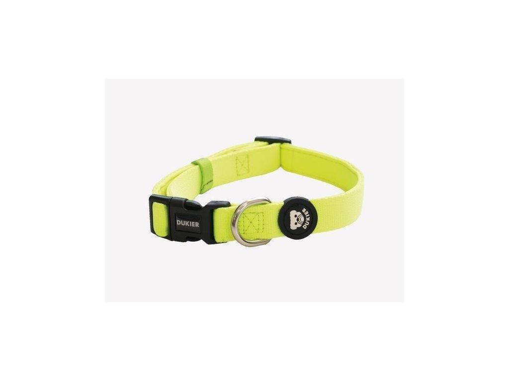 neon dog collar 371128 600x