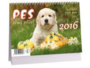 Kalendář 2016 - PES, VĚRNÝ PŘÍTEL, 23x16cm