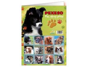 Pexeso - Pes, věrný přítel