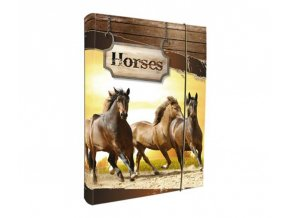 Box na sešity, A4, HORSES
