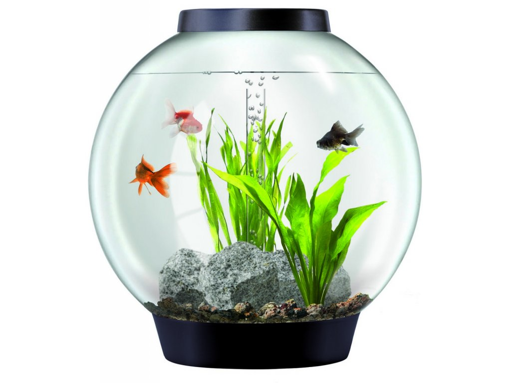 2313 biorb akvarijni set cerny 30l