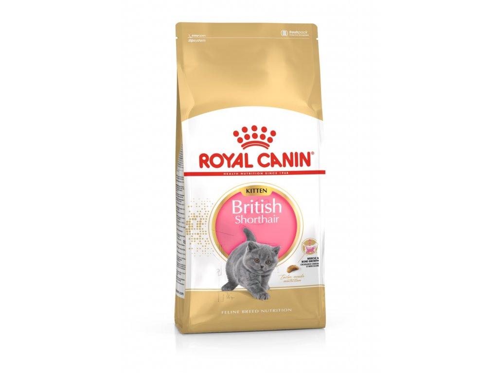 3060 royal canin british shorthair kitten 2 kg