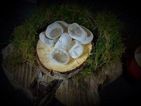 Dračí vejce - záhněda