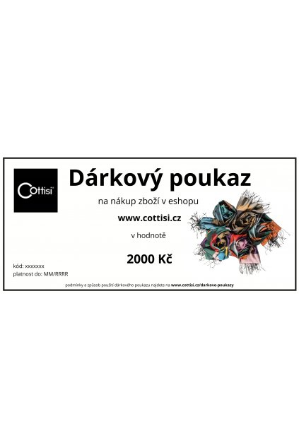 DV 2000