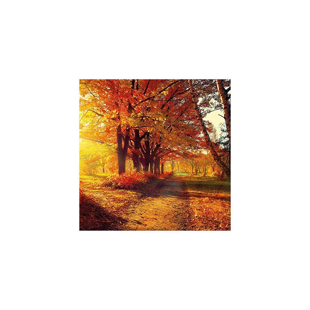 Ubrousky Podzimní park 33x33 cm, 20 ks
