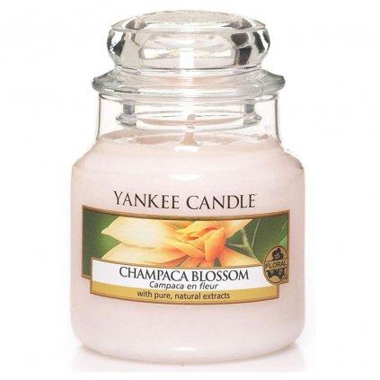 Yankee Candle - vonná svíčka Champaca Blossom (Květ magnólie) 104g