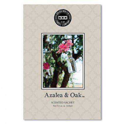 bridgewater azalea oak sacek