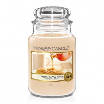 yankee candle freshly tapped maple svicka velka 1