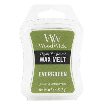WoodWick vonný vosk Evergreen (Vůně jehličí) 23g