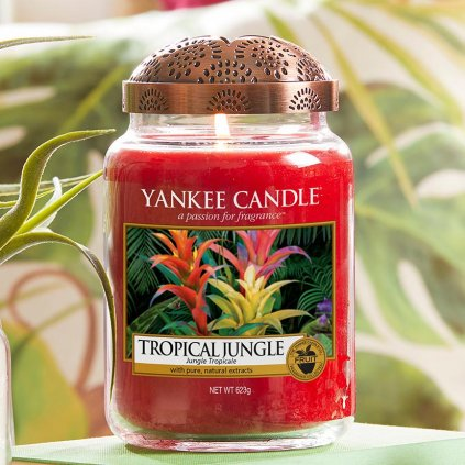 Yankee Candle - vonná svíčka Tropical Jungle 623g