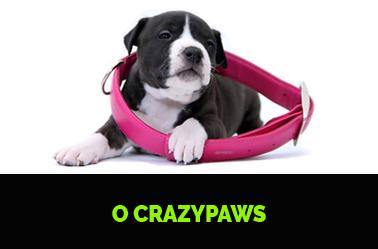 O crazypaws