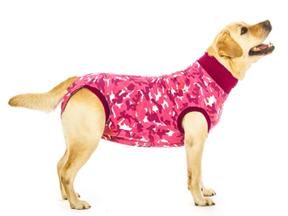Pooperační ochranné oblečení pro psa a kočku