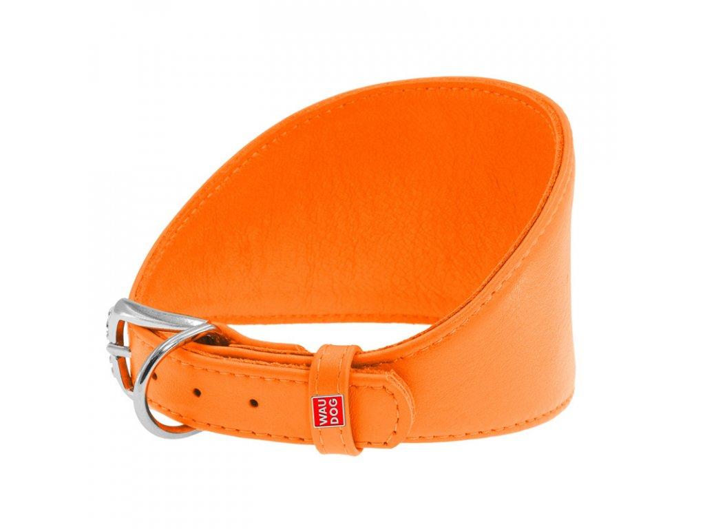 Kožený obojek pro chrty oranžový