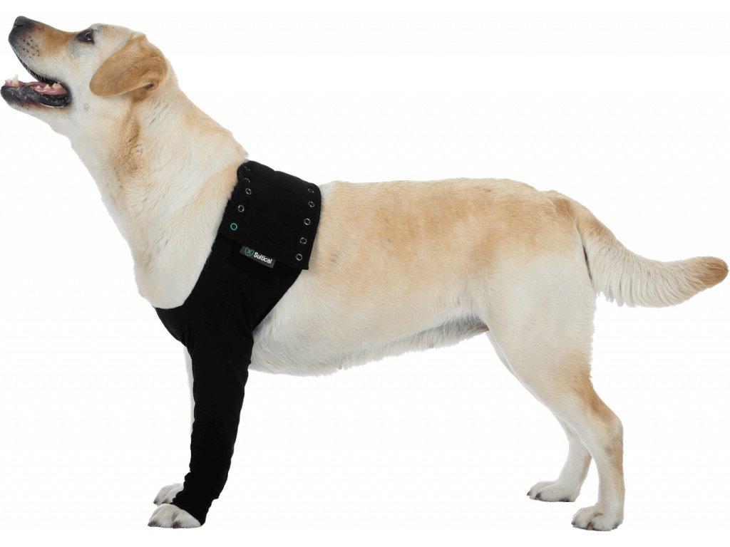 Pooperační ochranné oblečení na přední nohu psa