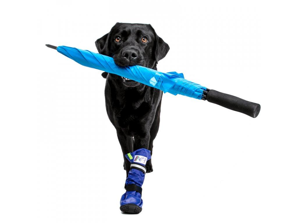 Pooperační ochranná bota pro psa