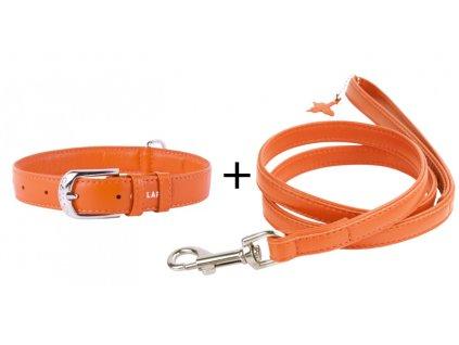 Plochý obojek a vodítko - oranžový set