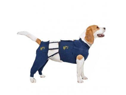Pooperační ochranný návlek na zadní nohy psa spolu s vestou