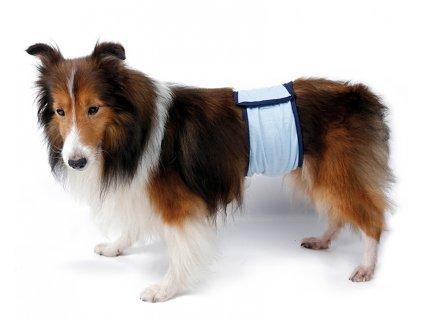 Pás proti značkování pro psa