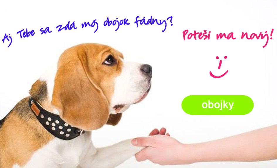 Obojky pre psy