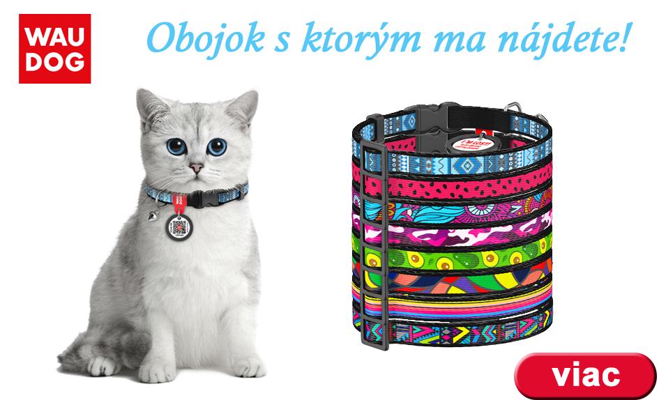 obojky s QR kódom pre mačky