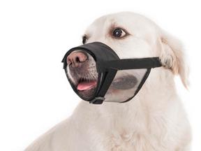 Nylonový náhubok pre psa