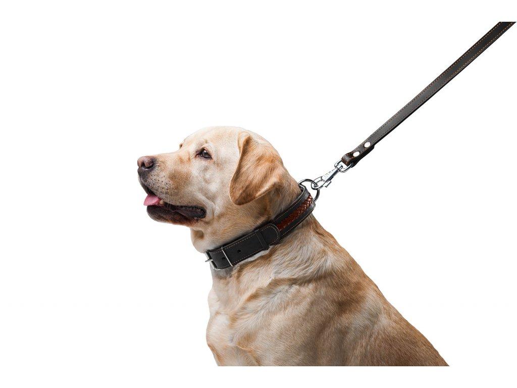 kozene voditko pre psa cierne
