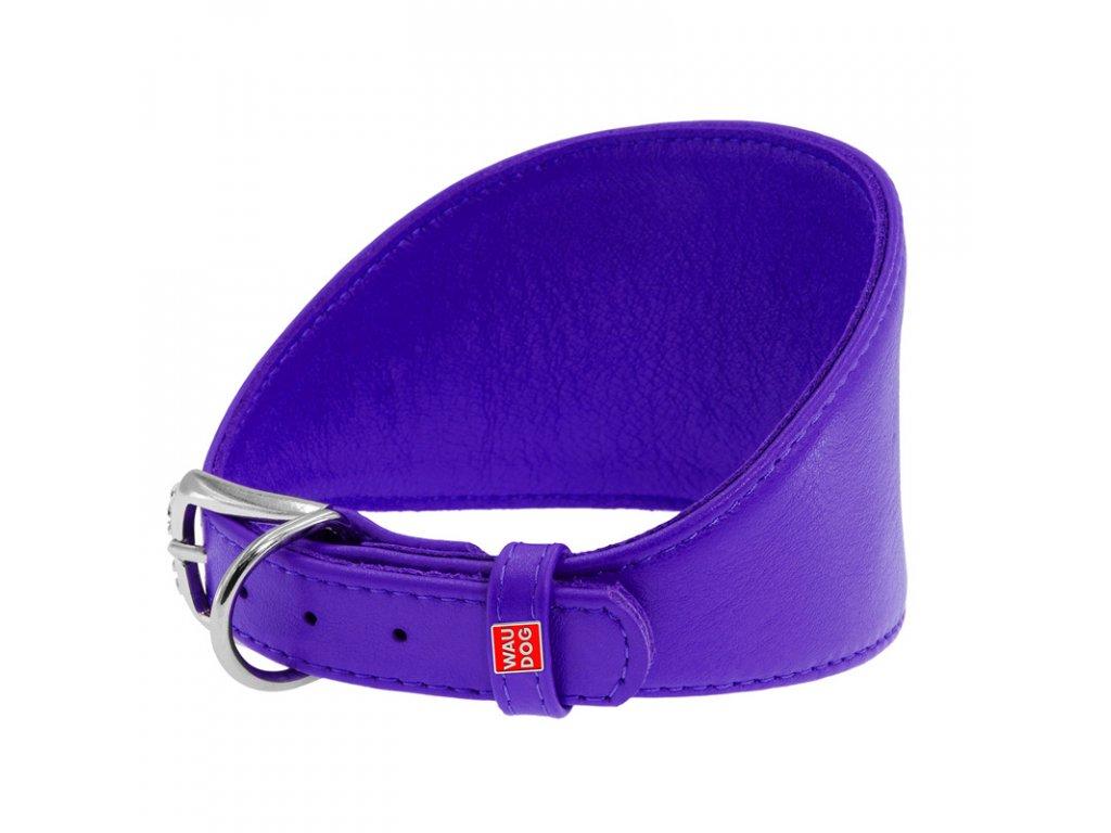 Obojok pre chrty kožený fialový