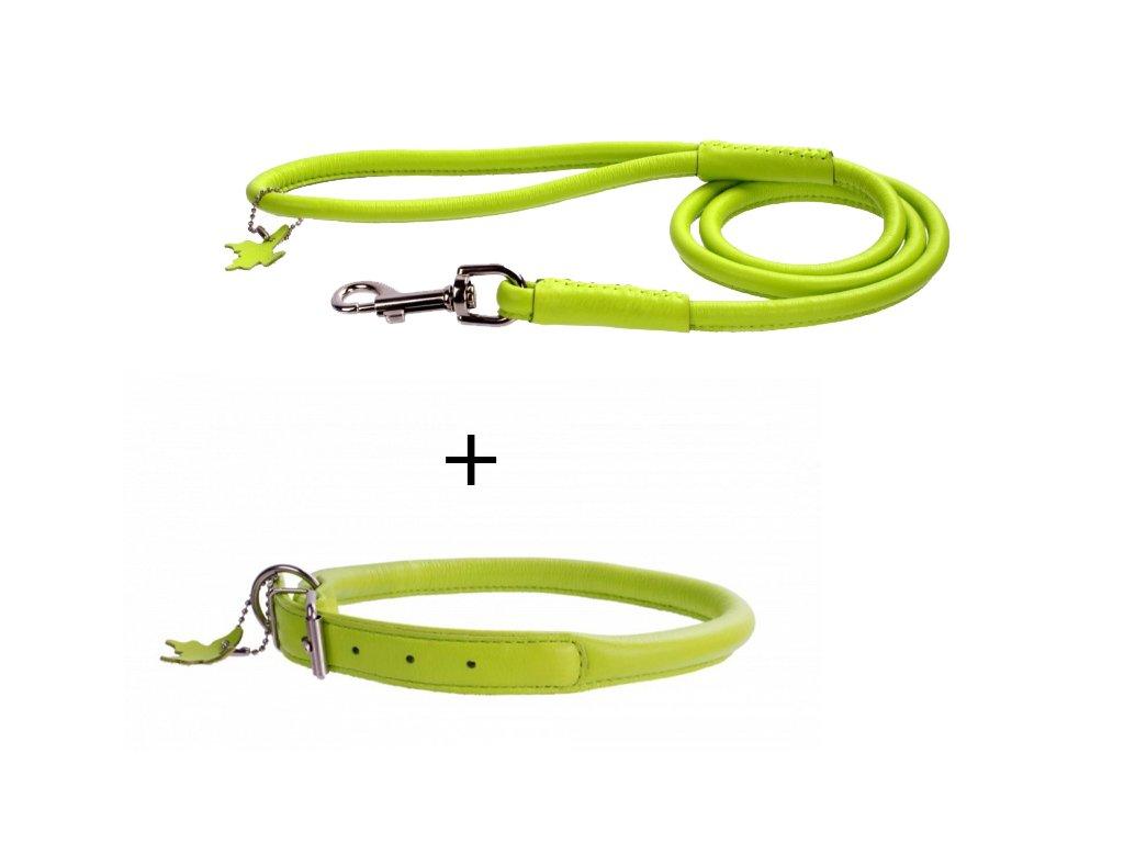 výhodný kožený obojok a vodítko pre psa zelený set