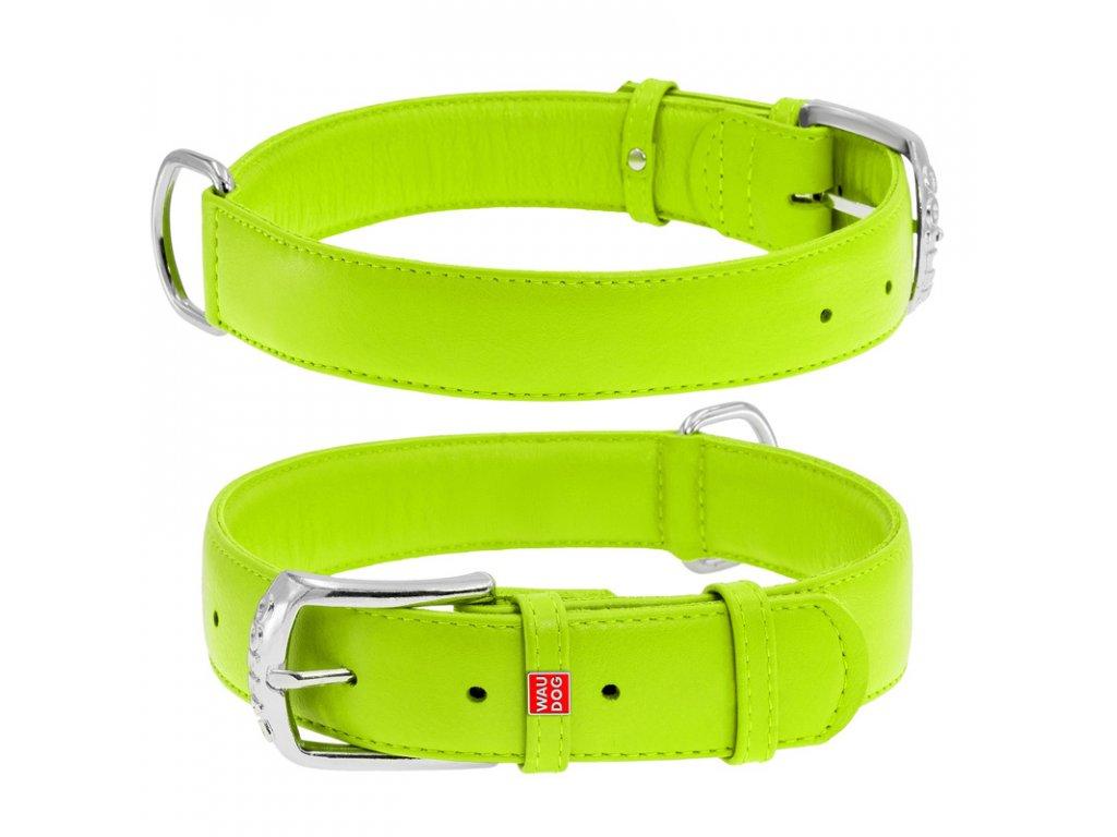 Plochý kožený obojok zelenej farby