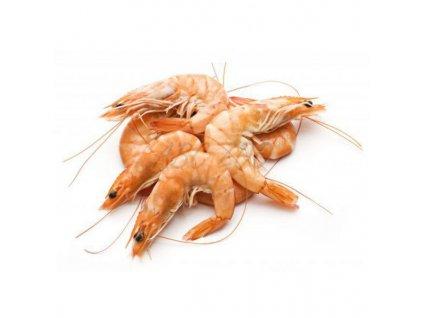susene tigrie krevety garnaty shrimps