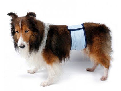 Pás proti značkovaniu pre psa
