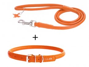 výhodný kožený obojok a vodítko pre psa oranžový set