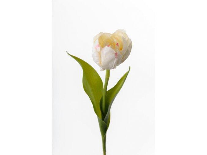 Umelý tulipán - smotanový