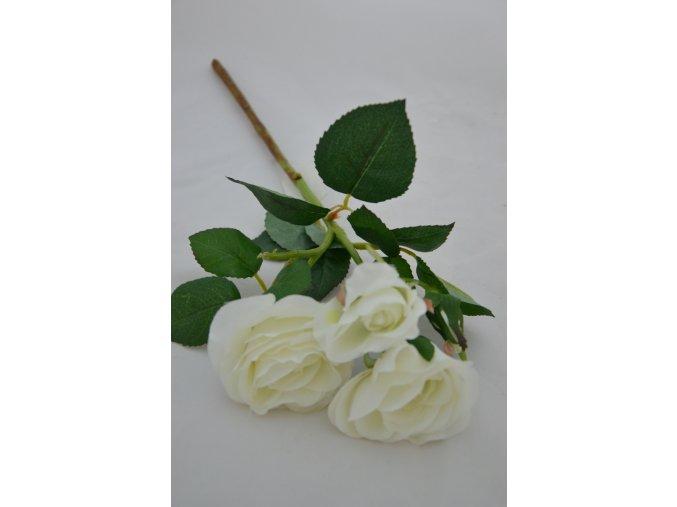 Ruža - trs - biela