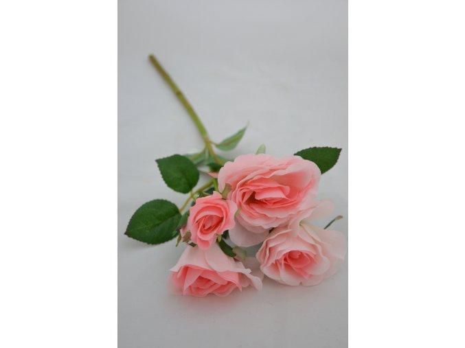 Ruža - trs - ružová