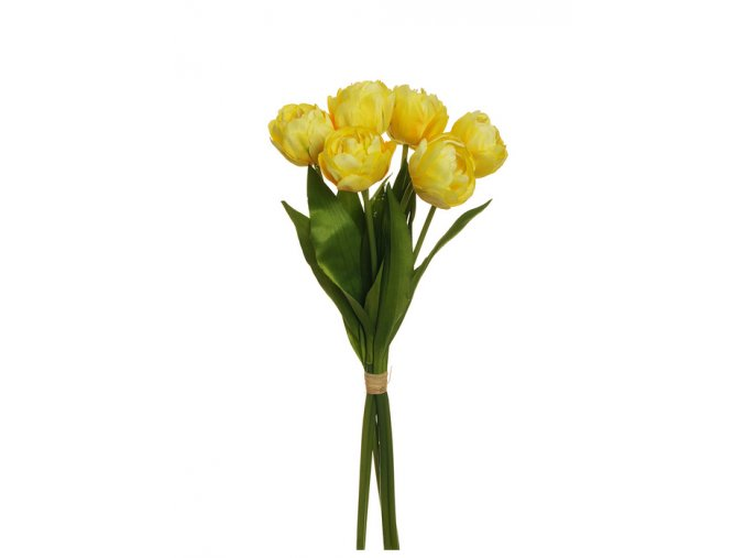 Tulipany zlte