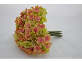 Hortenzie - kytička -marhuľovo-zelená