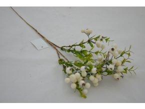 Konárik - biele bobule