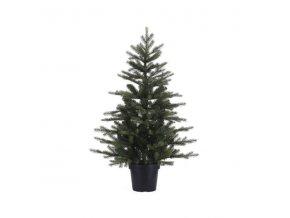 Vianočný stromček v črepníku - 120cm