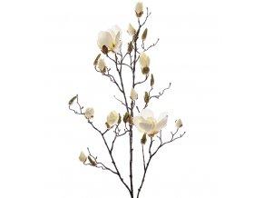 Magnólia - konár 110cm - biela