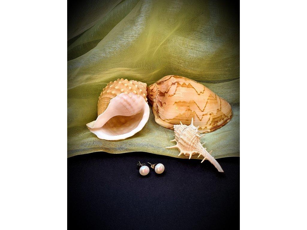 Naušnice - říční perly