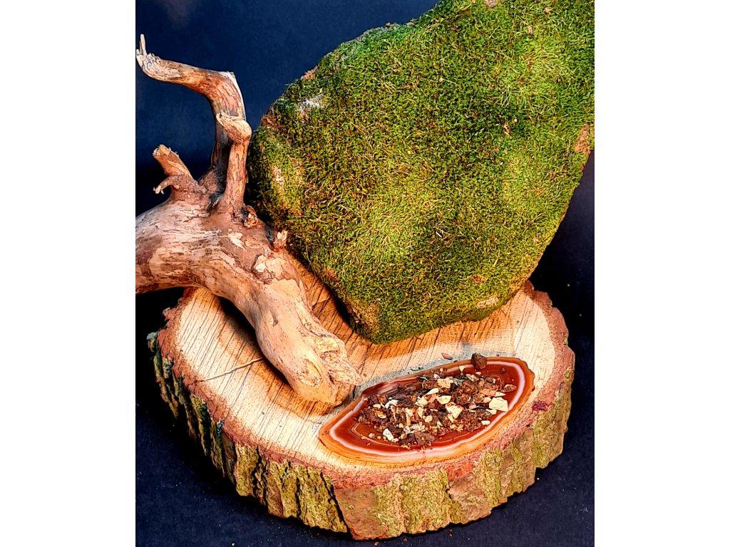 Vykuřovadlo - Šaman Amazonie
