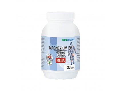magnezium B6 mega 270120