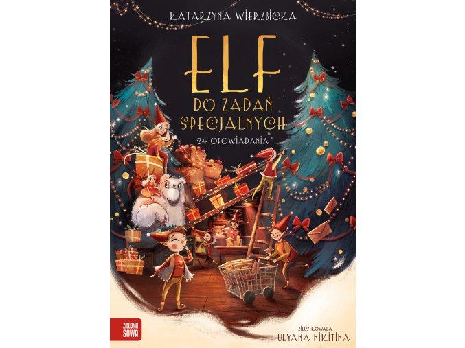 Elf do zadań specjalnych.