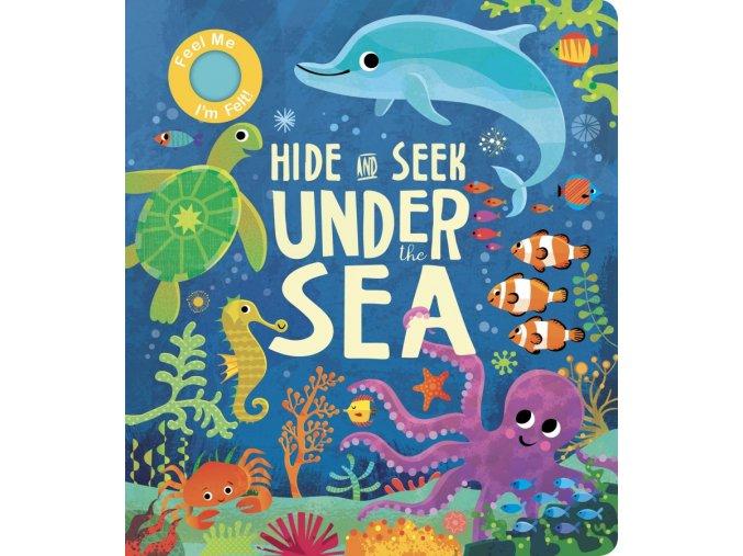 Hide and Seek Under the Sea