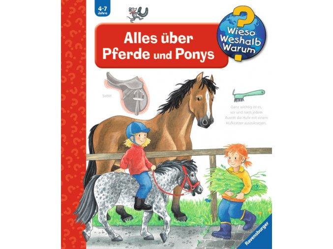Alles über Pferde und Ponys
