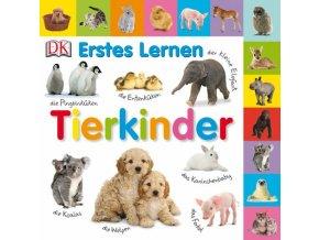 Erstes Lernen Tierkinder