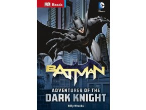 Batman Adventures of the Dark Knight