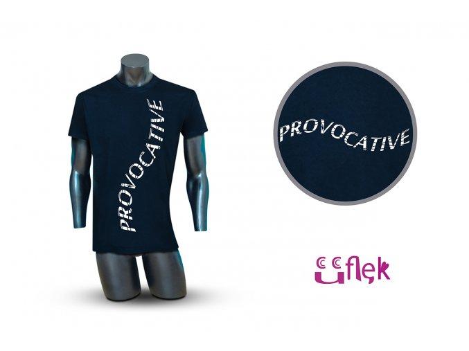 33 provocative 1