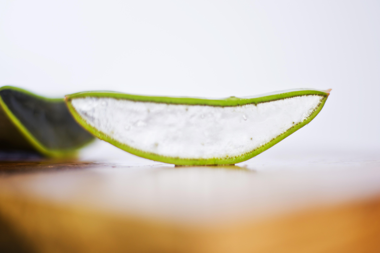 Aloe Vera jako přírodní antioxidant